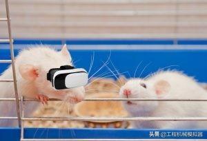VR技术,VR医疗